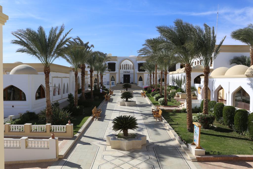 عرض فندق كلوب ريف شرم الشيخ