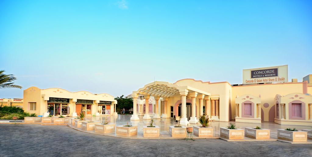 فندق كونكورد السلام الرياضي شرم الشيخ 5 نجوم