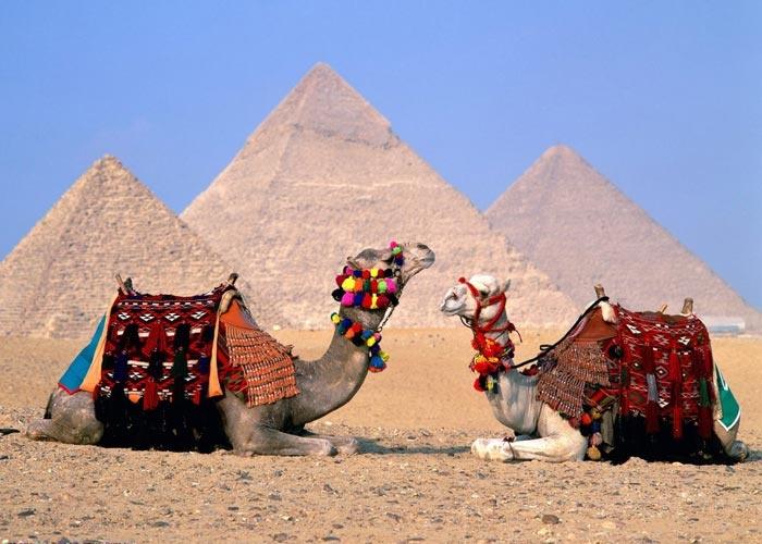 رحلات الي مصر برنامج القاهرة
